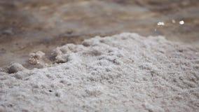 Νεκρά αλατισμένα κρύσταλλα θάλασσας φιλμ μικρού μήκους