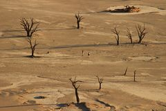 Νεκρά δέντρα Vley, στο εθνικό πάρκο namib-Nacluft στοκ εικόνες με δικαίωμα ελεύθερης χρήσης