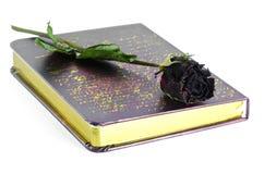 Νεκρά τριαντάφυλλα και βιβλίο. Στοκ Εικόνα