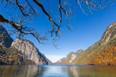 Νεκρές δέντρο και λίμνη Konigssee, Γερμανία Στοκ φωτογραφία με δικαίωμα ελεύθερης χρήσης