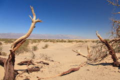 Νεκρή κοιλάδα σε Καλιφόρνια Στοκ φωτογραφία με δικαίωμα ελεύθερης χρήσης