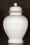 Νεκρικό δοχείο στοκ φωτογραφίες με δικαίωμα ελεύθερης χρήσης