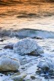 νεκροί πέρα από την ανατολή θάλασσας Στοκ Φωτογραφίες
