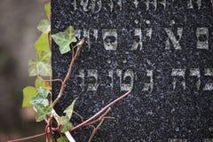 Νεκροταφείο νεκροταφείων Jewich Στοκ Φωτογραφία