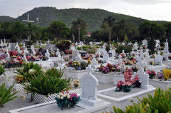 νεκροταφείο παραλιών ζω&et στοκ εικόνες