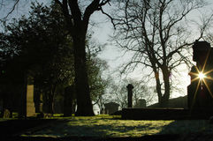 Νεκροταφείο Greyfriars στο χειμερινό ήλιο στοκ εικόνες