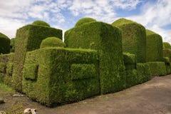 Νεκροταφείο topiary σε Tulcan Ισημερινός Στοκ εικόνα με δικαίωμα ελεύθερης χρήσης