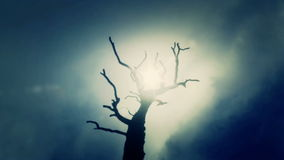 Νεκρό δέντρο μια κρύα ημέρα διανυσματική απεικόνιση