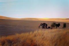Νεκρό συνοριακό αγροτικό σπίτι στοκ φωτογραφία