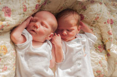νεογέννητα δίδυμα Στοκ Εικόνες