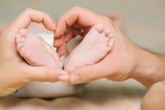 Νεογέννητα πόδια στα χέρια γονέων Στοκ φωτογραφίες με δικαίωμα ελεύθερης χρήσης