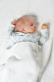 νεογέννητη κορυφαία όψη μω&r Στοκ Εικόνα