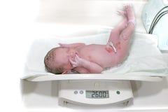Νεογέννητη μέτρηση βάρους μωρών Στο neonatal τμήμα στο νοσοκομείο στοκ εικόνα