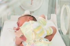 Νεογέννητος αθώος ύπνος μωρών σε έναν επωαστήρα στοκ φωτογραφία