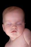 νεογέννητος ειρηνικά ύπνο&s Στοκ Εικόνες
