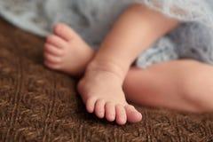 Νεογέννητος τρυφερός ύπνος μωρών στο πιό couturier κάλυμμα μαλλιού Καθαρή ανθρώπινη προσοχή ανθρωπότητας πίστης αγάπης αξίας Στοκ φωτογραφία με δικαίωμα ελεύθερης χρήσης