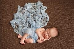 Νεογέννητος τρυφερός ύπνος μωρών στο πιό couturier κάλυμμα μαλλιού Καθαρή ανθρώπινη προσοχή ανθρωπότητας πίστης αγάπης αξίας Στοκ Εικόνες
