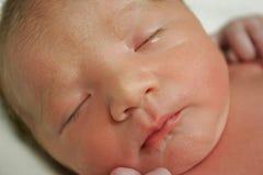 νεογέννητος ύπνος στοκ εικόνες