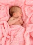 νεογέννητος Στοκ εικόνες με δικαίωμα ελεύθερης χρήσης