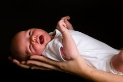 νεογέννητος Στοκ Εικόνα
