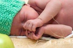 Νεογέννητο μήλο Στοκ Εικόνα