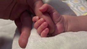Νεογέννητο μωρό που συμπιέζει το χέρι του μπαμπά φιλμ μικρού μήκους