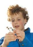 νεολαίες αγάπης αγοριών Στοκ Φωτογραφίες