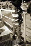 νεολαίες κάουμποϋ Στοκ φωτογραφίες με δικαίωμα ελεύθερης χρήσης