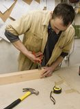 νεολαίες ξυλουργών Στοκ Φωτογραφίες
