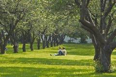 νεολαίες πάρκων ζευγών στοκ εικόνες