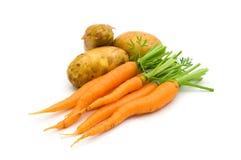 νεολαίες πατατών καρότων Στοκ εικόνες με δικαίωμα ελεύθερης χρήσης