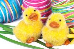 Νεοσσοί με τα αυγά Πάσχας και τους ναρκίσσους Στοκ εικόνα με δικαίωμα ελεύθερης χρήσης