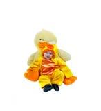νεοσσός μωρών Στοκ εικόνα με δικαίωμα ελεύθερης χρήσης