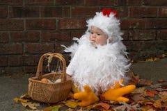 νεοσσός μωρών Στοκ Φωτογραφίες