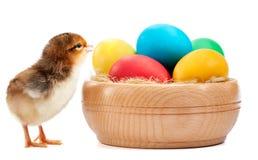 Νεοσσός RAD με τα αυγά Πάσχας. απομονωμένος στο λευκό Στοκ φωτογραφίες με δικαίωμα ελεύθερης χρήσης