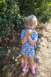 νεολαίες εκμετάλλευσης κοριτσιών μήλων Στοκ Εικόνες