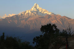 Νεπάλ Mountine Machapuchare (Ιστορία ψαριών) Στοκ εικόνα με δικαίωμα ελεύθερης χρήσης