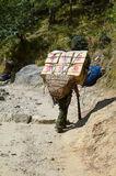 Νεπαλικός αχθοφόρος στοκ φωτογραφία με δικαίωμα ελεύθερης χρήσης