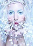 νεράιδα παγωμένη Στοκ Φωτογραφίες