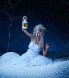 νεράιδα παγωμένη Στοκ φωτογραφία με δικαίωμα ελεύθερης χρήσης