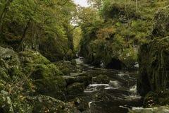 Νεράιδα Glen στην Ουαλία στοκ φωτογραφίες με δικαίωμα ελεύθερης χρήσης