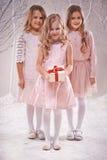 Νεράιδες Χριστουγέννων Στοκ Εικόνες