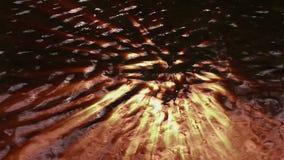 Νερό επιφάνειας - ακτίνες ήλιων ελεύθερη απεικόνιση δικαιώματος