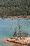 Νερό λιμνών Στοκ Εικόνες