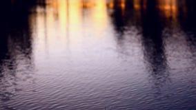 Νερό και άποψη ηλιοβασιλέματος φιλμ μικρού μήκους