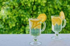 Νερό λεμονάδας στα γυαλιά στο θολωμένο υπόβαθρο φύσης με το διάστημα αντιγράφων Θερινά κρύα κοκτέιλ με τα φρέσκα τεμαχισμένα λεμό Στοκ Φωτογραφία