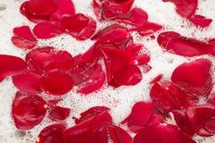 Νερό λουτρών με τα ροδαλά πέταλα Στοκ Εικόνες