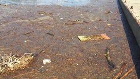 Νερό με τα απορρίμματα απόθεμα βίντεο