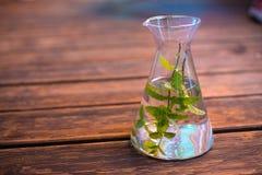 Νερό με peppermint τα φύλλα στην καράφα στο ξύλινο έδαφος στοκ εικόνα με δικαίωμα ελεύθερης χρήσης