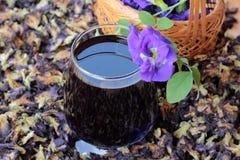 Νερό λουλουδιών Anchan και φρέσκια anchan πορφύρα λουλουδιών Στοκ εικόνα με δικαίωμα ελεύθερης χρήσης